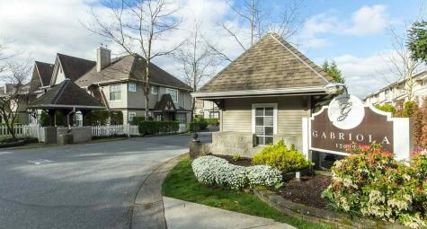 18 - 12099 237 Street, East Central, Maple Ridge