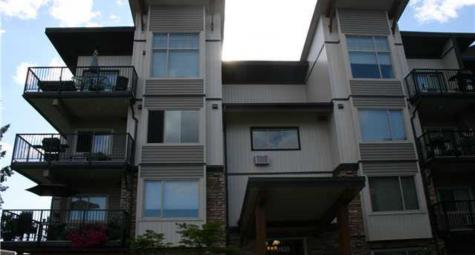 316 - 11935 Burnett Street, Maple Ridge