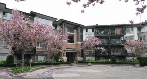 303 - 11665 Haney Bypass, West Central, Maple Ridge