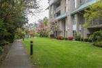 11609-227-street-east-central-maple-ridge-20 at 513 - 11609 227 Street, East Central, Maple Ridge